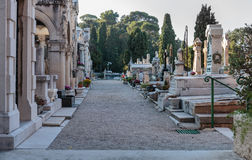 Old Chateau Cemetery in Nice on Castle Hill. NICE, FRANCE - OCTOBER 29, 2014: Old Chateau Cemetery on Castle Hill stock image