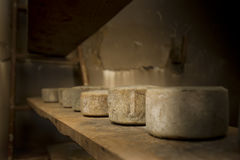 Old cheeses Royalty Free Stock Images