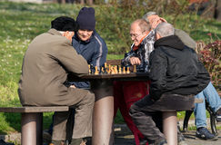 Old chess players in park Royalty Free Stock Images
