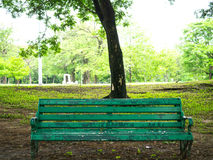 Old chesterfield. Under the tree Stock Photography
