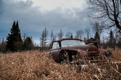 An old Chevrolet lays abandoned in an overgrown. Stock Images