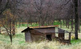 An old chicken coop. An old, derelict, run down chicken coop in wooded landscape Royalty Free Stock Photography