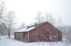 The old chicken coop. An old chicken coop winter scene Stock Image
