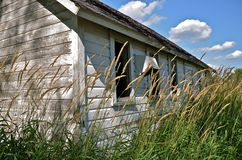 Old Chicken House. An old unused chicken house is surrounded by long grass Royalty Free Stock Image