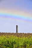 Old chimney with rainbow and flowering sugar cane fields, Mauritius Royalty Free Stock Photo