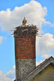 Old chimney with a stork Ciconia ciconia nest Stock Photo