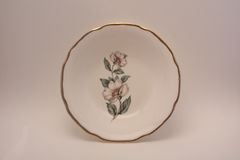 Old China Dish. Isolated photo of small china bowl, white with gold trim and dogwood flowers royalty free stock photo
