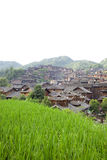 Old Chinese village with rice field Royalty Free Stock Image