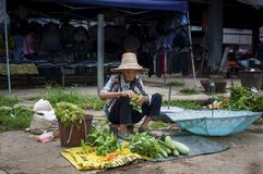 Old Chinese woman selling vegetables in a street market at the Fuli Village in the countryside of southern China Royalty Free Stock Images