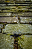 Old Chipped Slate Roof Tiles Stock Images
