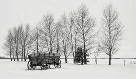 Old chuck wagon sitting in snow along a row of bare trees in winter. Horizontal black and white image of a beautiful winter scene of an old wood  farm wagon with Stock Photo
