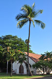 Old church. Building with palm tree Stock Photo