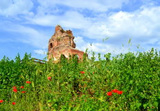 Old church ruins on summer field Royalty Free Stock Image