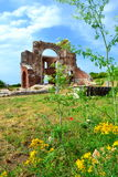 Old church ruins in summer nature Stock Image