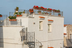 Old city house with terrace and red flowers Stock Photography