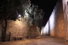 The old city of Jerusalem Royalty Free Stock Photos