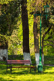 Old city park with lantern. Area of the old city park with lantern near bench under the conifer tree Stock Photos