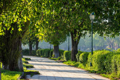 Old city park with lantern Royalty Free Stock Images