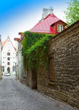 Old city's  streets . Tallinn. Estonia Royalty Free Stock Images