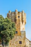 Old City of Salamanca. UNESCO World heritage Royalty Free Stock Photography