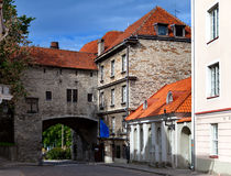 Old city in Tallinn, Estonia. Big Sea gate in a sunny day Royalty Free Stock Photos