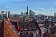 Old city Tallinn in Estonia. Stock Photos