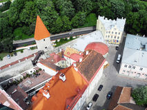 Old city Tallinn. Royalty Free Stock Image