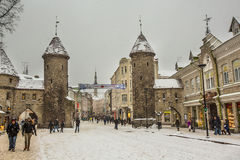Old City Tallinn in Winter Royalty Free Stock Image