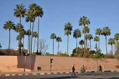 Old city wall in Marrakesh Royalty Free Stock Image