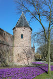 Old city wall and tower with purple flowers royalty free stock photo