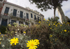 Old classic Athenian residence and flowers Stock Image