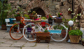 Old classic style vintage bicycles with flowers. Travel in east Europe Bulgaria Stock Photography
