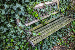 Old classic wooden garden furniture outdoor covered vegetation Stock Photo