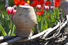 Old clay jug and tulips Stock Photography