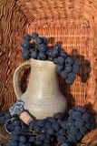 Old clay wine jug surrounded by black grape bunches and winemaking emblem Royalty Free Stock Image