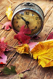 Old clock on the background of fallen leaves Stock Images