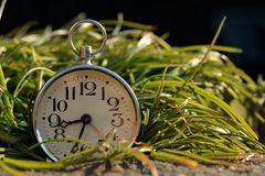Old clock in green grass Stock Photography