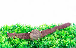 Old clock on green grass Stock Photography
