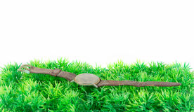 Old clock on green grass Royalty Free Stock Images