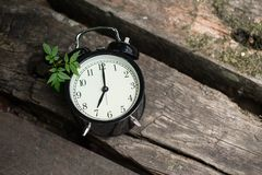 Old clock retro style show 7 o`clock on wood. In the forest background stock image