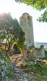Old clock tower ruins with trees Stock Images