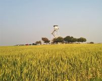 Old watch tower in the middle of wheat field. Old and closed watch tower, that was built during 1948. this watch tower used to defend on the near villages royalty free stock photo