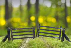 Old closed wooden gate Stock Images