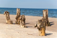 Old coastal protection with a breakwater. Wooden stakes in the sea. Autumn morning on the beach of the Baltic Sea. Stock Images