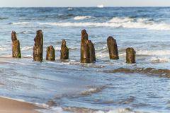 Old coastal protection with a breakwater. Wooden stakes in the sea. Autumn morning on the beach of the Baltic Sea. Royalty Free Stock Photography
