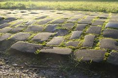 Old cobble stone road with moss grass and evening low sun Stock Photography