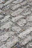 Old Cobbles. Ancient cobblestone pavement in the old town Royalty Free Stock Photo