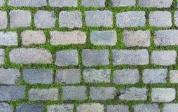 Old cobblestone Stock Image
