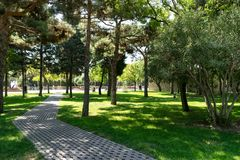 Old cobblestone footpath at a park. Pathway in a Peaceful City Park royalty free stock photos