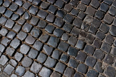Old cobblestone pavement. Stock Photography